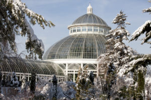 The Haupt Conservatory at NYBG in winter