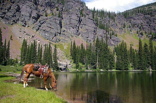 Triple Creek Ranch unplugged