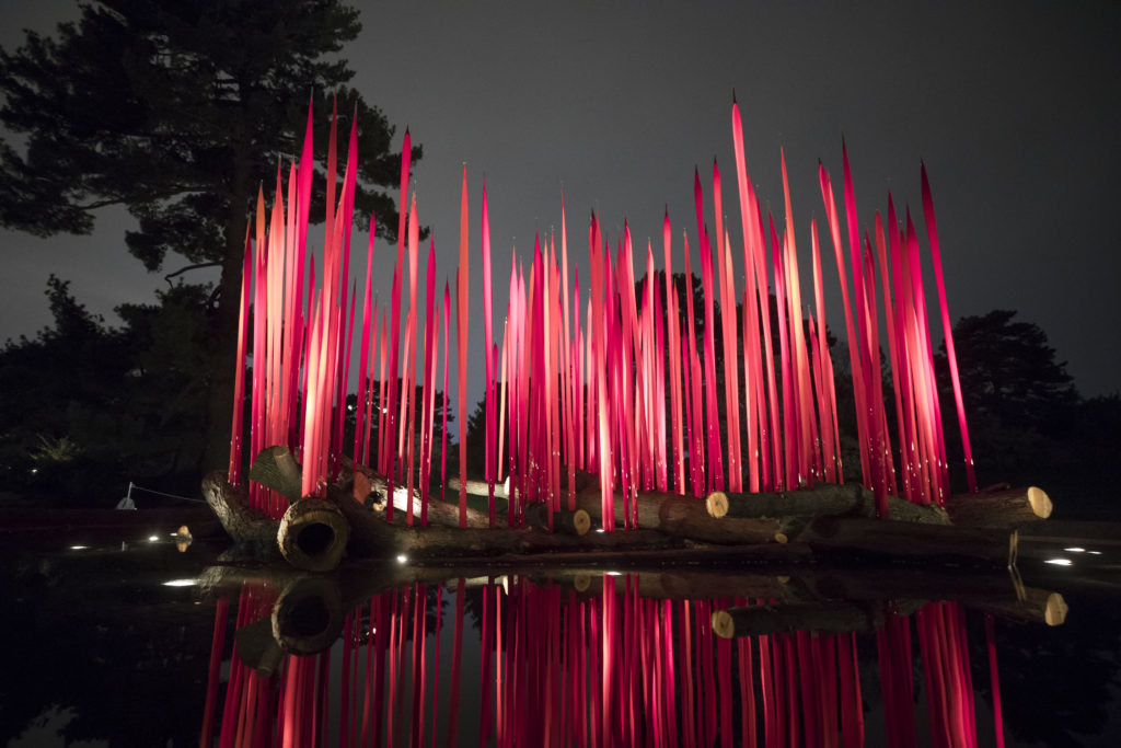 """Dale Chihuly, """"Red Reeds on Logs,"""" 2016, installed at The New York Botanical Garden for the exhibition, CHIHULY. (Photo By Ben Hider)"""