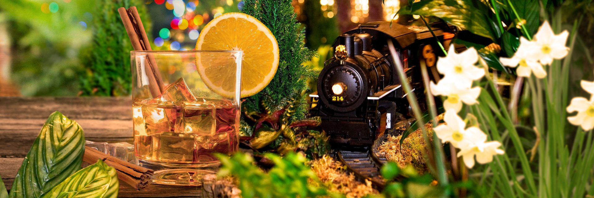Bar Car Nights At Nybg 39 S Holiday Train Show Skouttravel